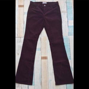 LOFT Pants - Ann Taylor Loft Modern Boot Cut Burgundy Corduroy